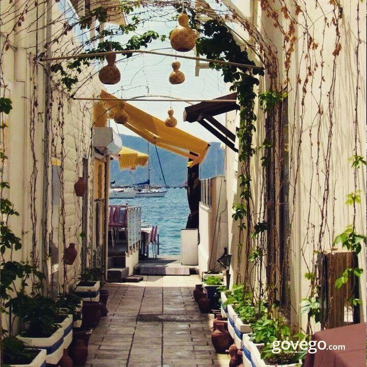 Tatile doyamayan ama yine de dönmek zorunda olanlar için Bodrum'dan bir ara sokak paylaşsak mı? ♥️ -------------------- govego.com  #doğa #naturel #yeşil #green #life #lifeisgood #seyahatetmek #seyahat #yolculuk #gezi #view #manzara #gününkaresi #huzur #an  #anatolia #turkey #travel #turizm #türkiye #turkey #instagram #instagood #instaphoto #bestoftheday #photo #huzur  #govego #smile #travel