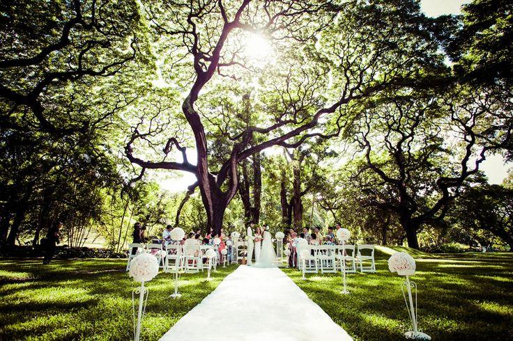 ハワイ挙式・海外挙式なら[クラシコウエディング]モアナルアガーデン・プリンスロット フラパ Photo © WORLD BRIDAL #ハワイ挙式 #ガーデンウェディング #モアナルアガーデン #モンキーポッド