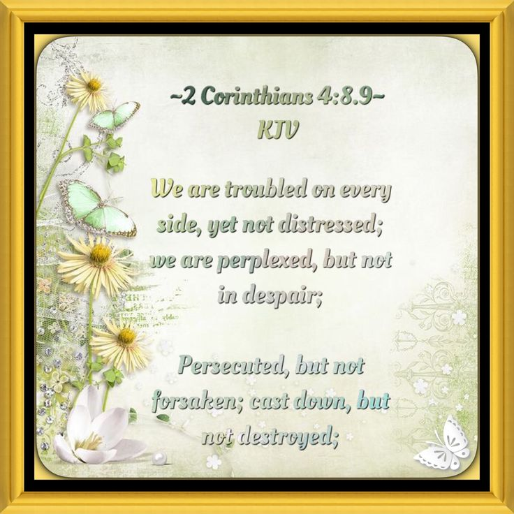 We are troubled on every side, yet not distressed; we are perplexed, but not in despair; Persecuted, but not forsaken; cast down, but not destroyed; ~2 Corinthians 4:8,9 ~ KJV ✝️
