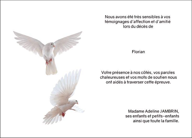 Carte de remerciements décès - thème animaux - Duo de colombes
