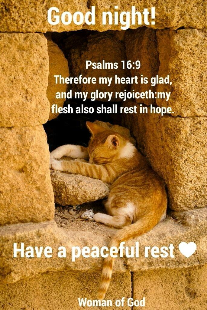Good Night sister and yours, Have a restful  night ,God bless.xxx  ❤❤❤✨✨✨