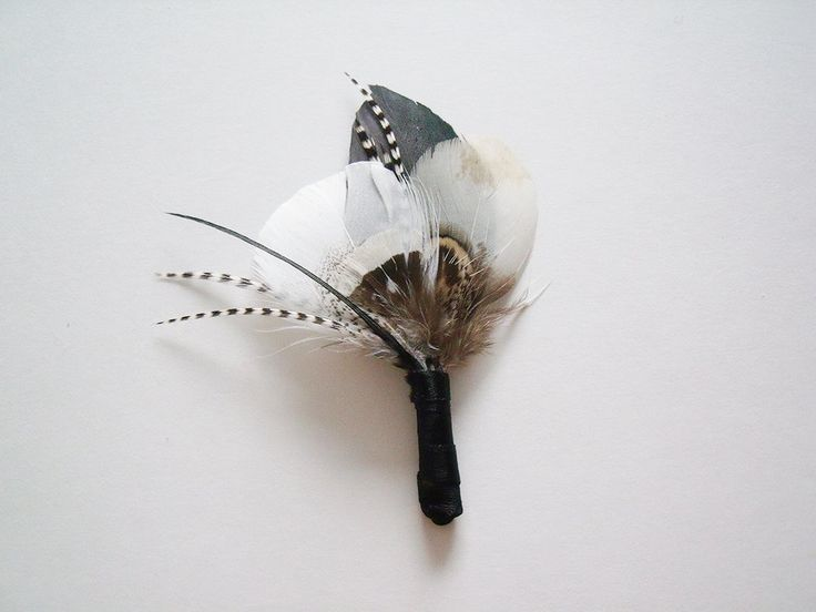 pheasant feathers wedding - Google Search