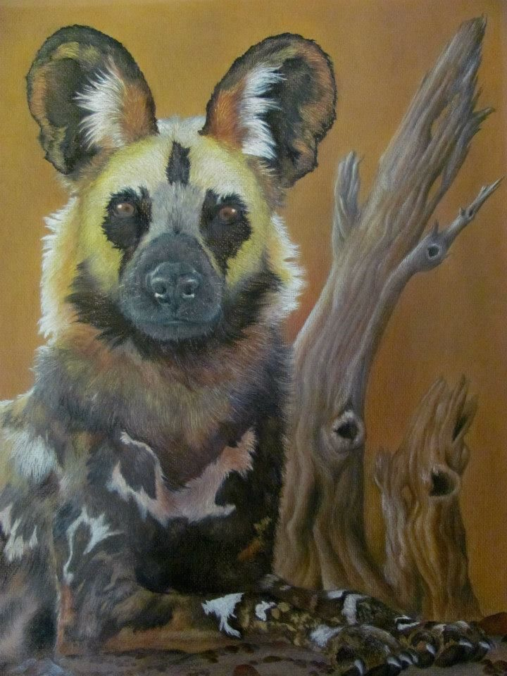 African Wild Dog by Landi-Michelle van den Berg. Soft Pastel Drawing.