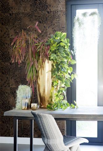 542 besten \WOHNEN Bilder auf Pinterest Zimmerpflanzen - pflanzen dekoration wohnzimmer