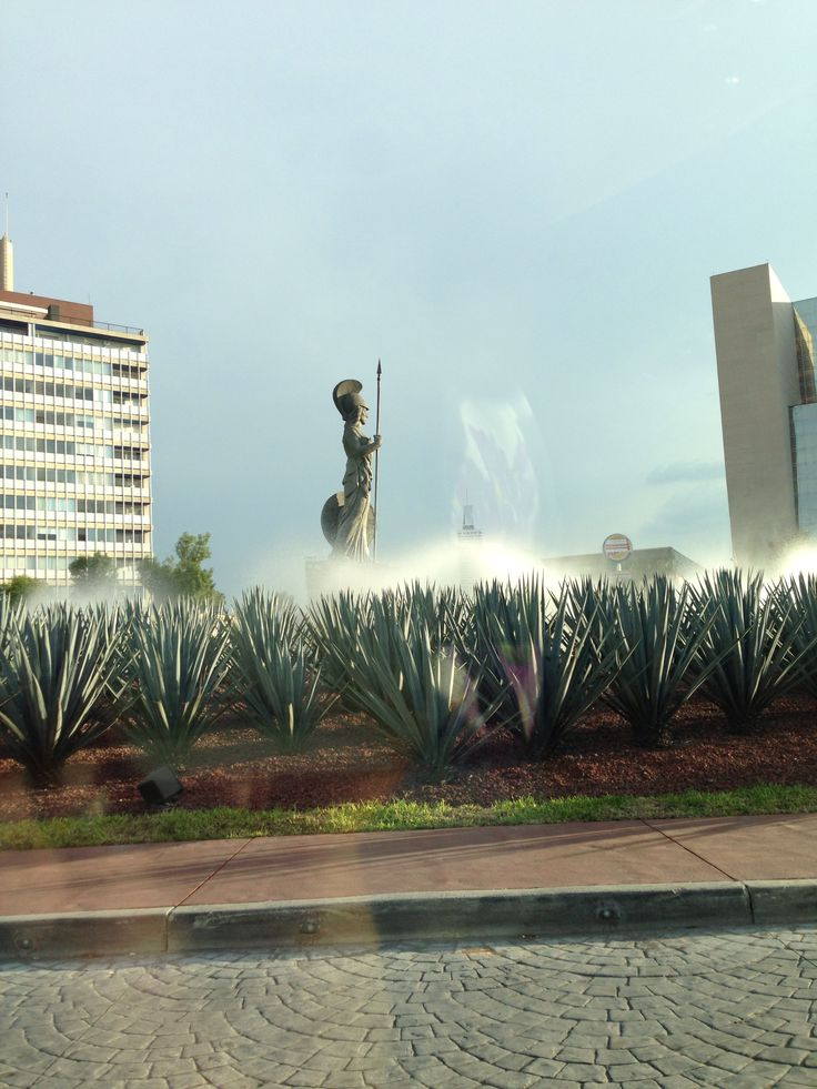 #La Minerva#Guadalajara#Mexico