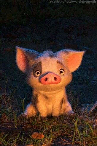 Pua, loyal friend of Moana
