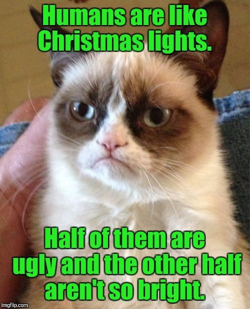 Grumpy Cat | Humans are like Christmas lights. Half of them are ugly and the other half aren't so bright. | image tagged in memes,grumpy cat | made w/ Imgflip meme maker