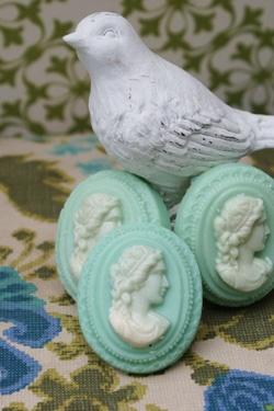 Soap cameos