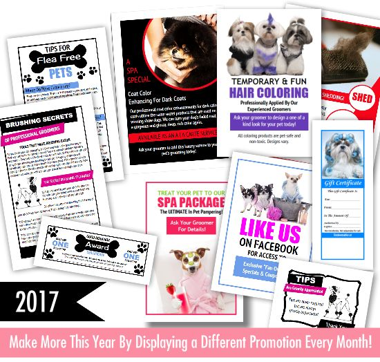 2017 Printable promos for dog grooming salon owners. comes complete with monthly marketing plan. Available at http://www.petgroomingmarketingkit.com/dog-grooming-appointment-book.html