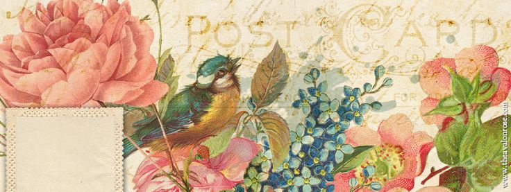 Free Springtime Facebook Cover Graphic