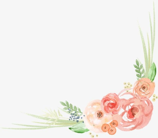 Watercolor Angle Watercolor Clipart Watercolor Flower Png