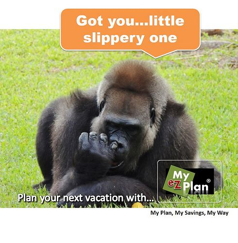 """""""Oh ! Comic Animal   Free trip planner ! Go to www.myezplan.com & discover - What to do in Las Vegas USA  with myezplan - Pinterest  #cheese #lake #sand #reflection #shore #canada #myezplan"""