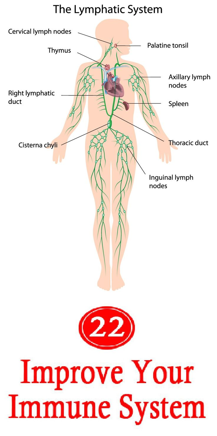 Workbooks lymphatic system worksheets : 59 best Science experiments images on Pinterest | Medicine ...