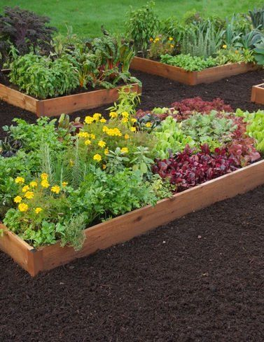 79 95 raised beds are easy to set up plant and maintain producing