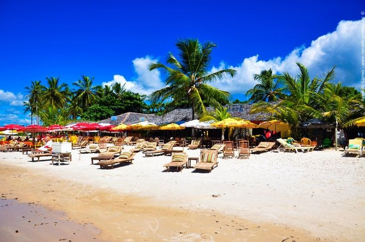 Praia Dos Coqueiros, Trancoso, Bahia Porto Seguro 166981