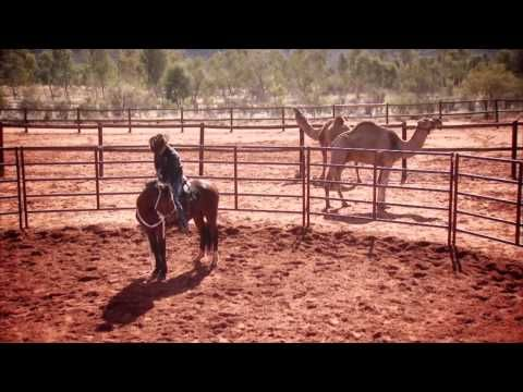 Clinton Anderson - Outback Adventure 6 of 14 - YouTube