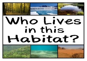 A set of 10 A4 printable posters displaying photographs of a range of different habitats. With a prompting title poster, there are 9 different habitats that prompt students to think about which animals/ creatures would live in a specific habitat. Visit our TpT store for more information and for other classroom display resources by clicking on the provided links.