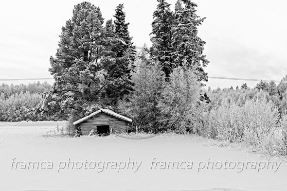 Wintertime  framcaphotography.com