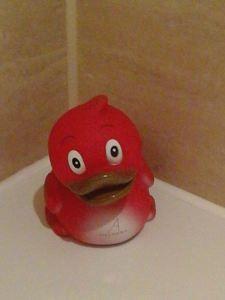 Duck! Hilarious!