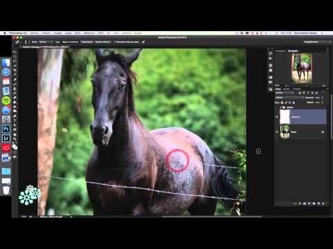 Cómo borrar elementos de una fotografía con Photoshop