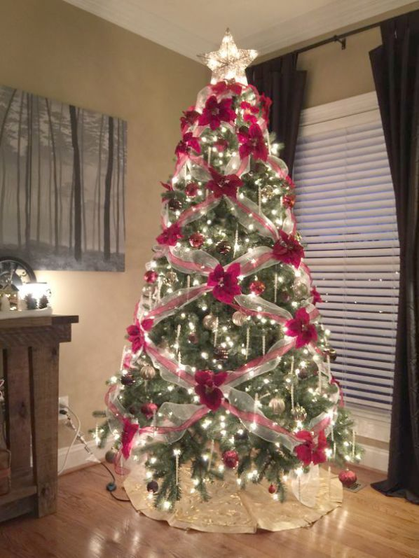 Christmas Songs Baby Behind Christmas Tree Farm Dallas