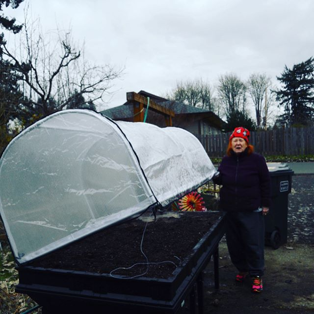 "81 Likes, 8 Comments - Vegepod (@vegepod) on Instagram: ""Emailed in from 78 year old Kay Zambone in 🇺🇸! 'Hi simon, I have set up the pod already and despite…"""