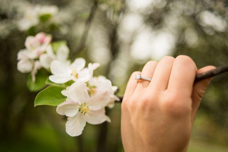 #VisualRoots #Florals #WeddingRings #Muskoka