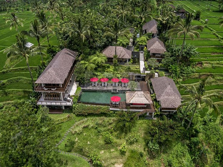 Luxurious Countryside Estate on 127 Are Freehold Land in the Highlands of Bali: Nestled in the highlands of… #baliproperty #balivillasale