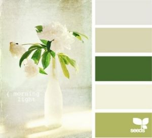 color inspiration by lupe