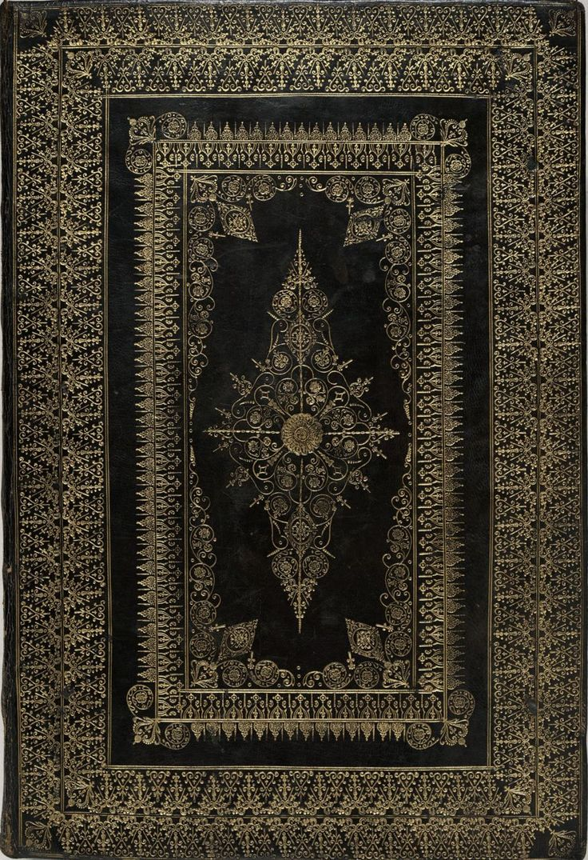 best rug ever
