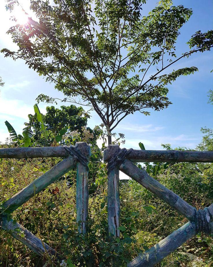 Nabuklod Mountain.. #pampanga #floridablanca #mountain #nature #philippines #firstromanianintaygaytay #officialphotoandtips #greentrees #photographyeveryday #photography #photophilippines #photoph