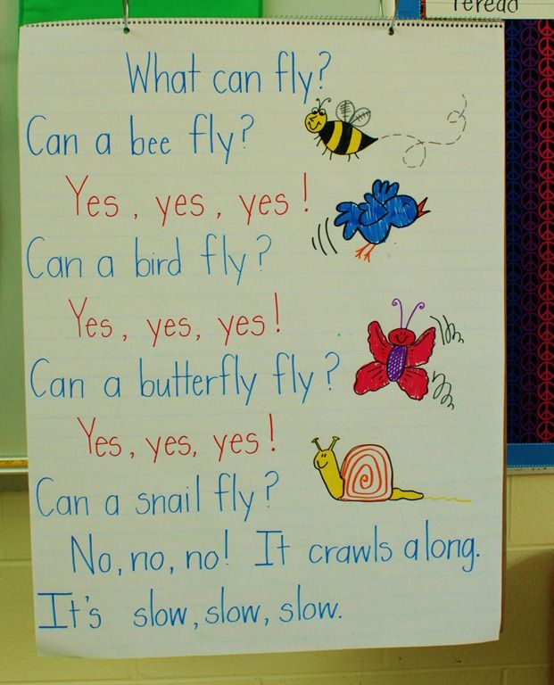 Fun poem for a chart to into animals that fly and those that don't