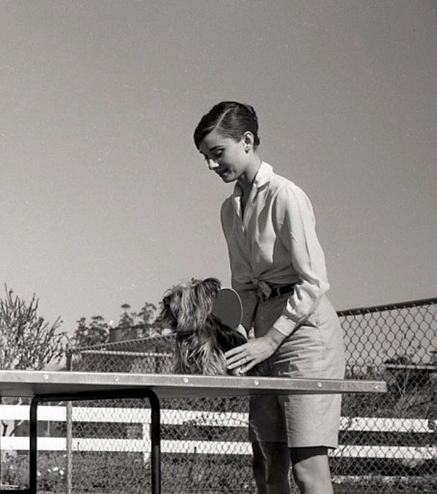 """timelessaudrey: """" Audrey,Mel and Mr Famous photographed by Don Ornitz in California,1958 """""""