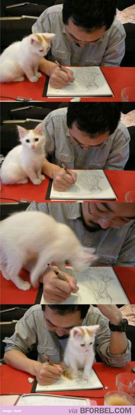 This Is How People With Cats Do Work…