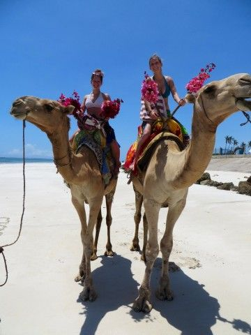 Riding camels on Diani Beach, Kenya