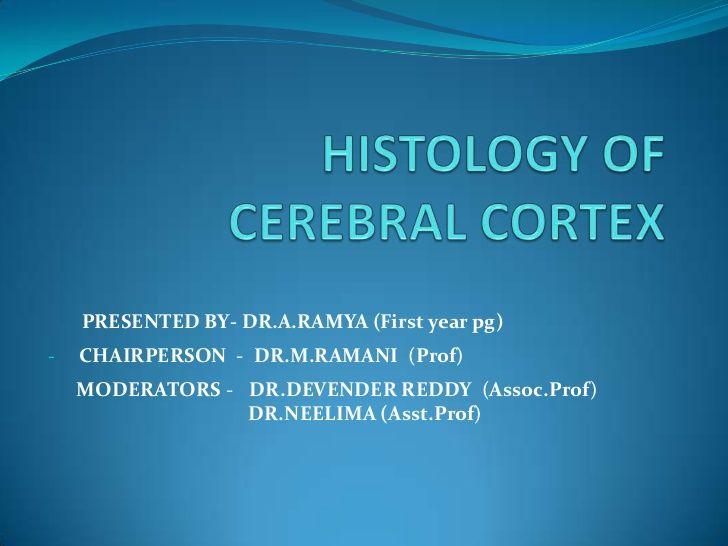 Histology of cerebral cortex
