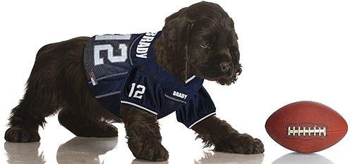 official photos f797b 09d33 Tom Brady #12 Pet Jersey #PetsFirst   NFL   American ...