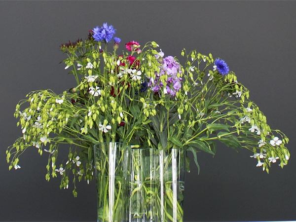 Fresh cut English arrangement