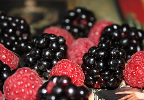 Blackberries and raspberries #food #piemonte #italy #provinciadicuneo