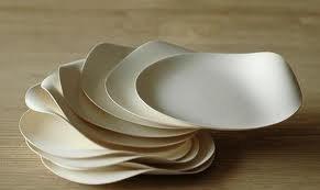 Wasara: disposable tableware / biodegradable