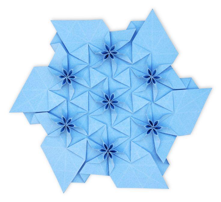 Flower Tessellation, Evan Zodl
