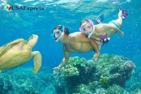 U.S. Divers Lux Platinum Snorkeling Set Panoramic View Mask Scuba Diving Gear