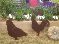Rusty Tin Chooks from The Garden Tool Shop!