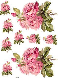 transfers rosas vintage - Buscar con Google