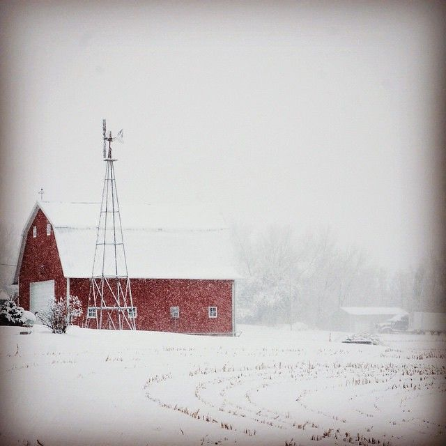 A rural winter scene near Knoxville, Iowa, by Instagrammer (at)iowablessed. Tag your photos #midwestmoment for a chance to be featured on http://www.instagram.com/midwestlivingmag