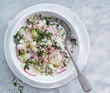 Det här receptet på hemmalagad gurksallad är ett nyttigt tillbehör till sommarmaten. Prova den till exempel till korv med bröd. Med fint skivade rädisor blir det en somrig smakupplevelse som dessutom är vacker på matbordet.