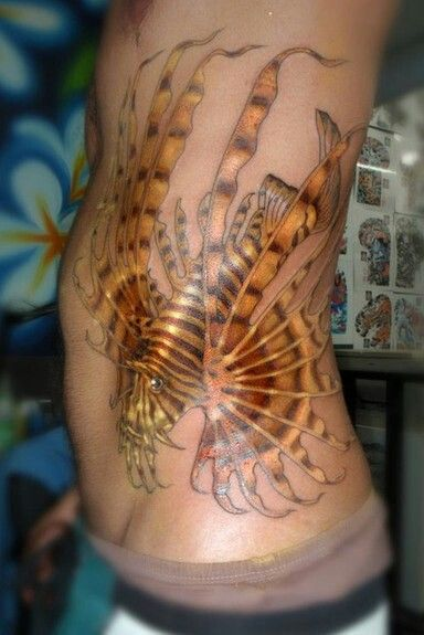 Gold Tattoo Ink: 58 Best Images About Lionfish & Ocean Tats On Pinterest