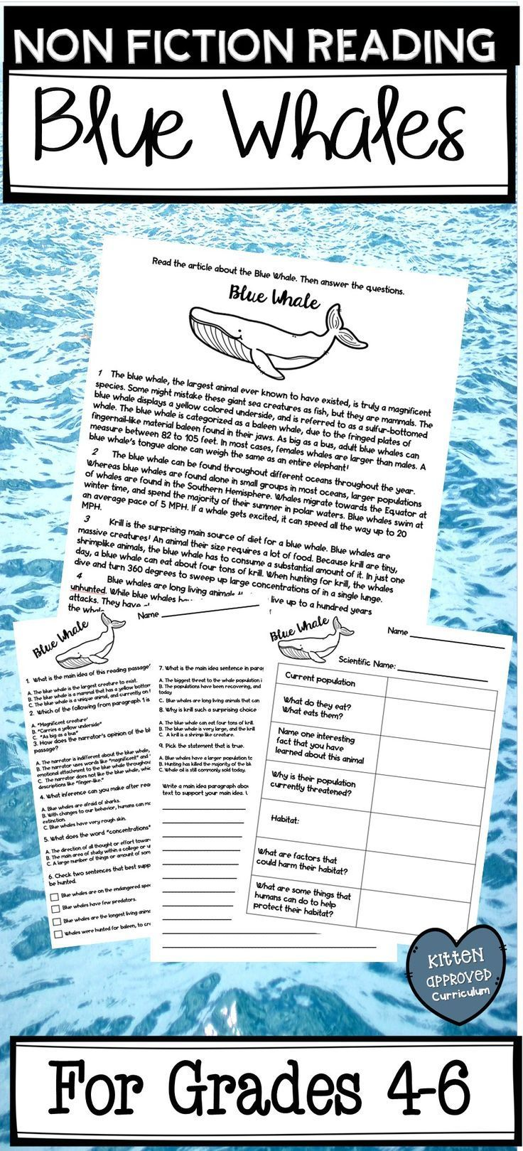 Non Fiction Reading And Comprehension Questions For 4th 5th And 6th Grade Students Perfect For Earth Day Reading Passages 6th Grade Reading Teaching Reading [ 1619 x 736 Pixel ]