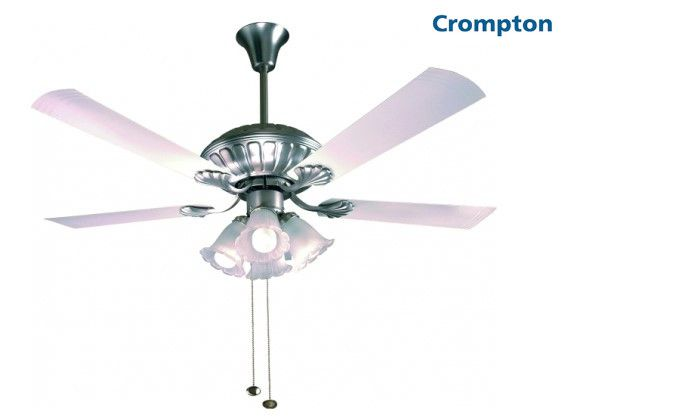 Buy High Speed Super Premium Jupiter Ceiling Fan At Affordable Price By Crompton Buy Energy Efficient Super Premium Jupiter Ceiling Fan Ceiling Fan Design Fan