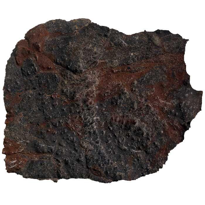 How To Identify Meteorites